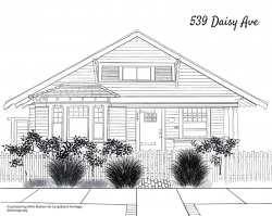Drawing of 539 Daisy
